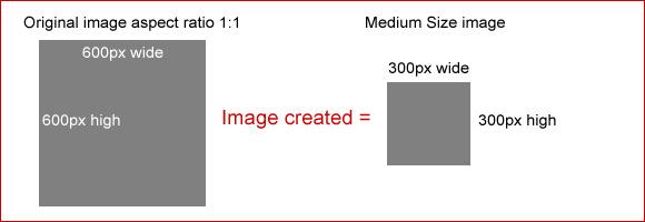 medium-600-600